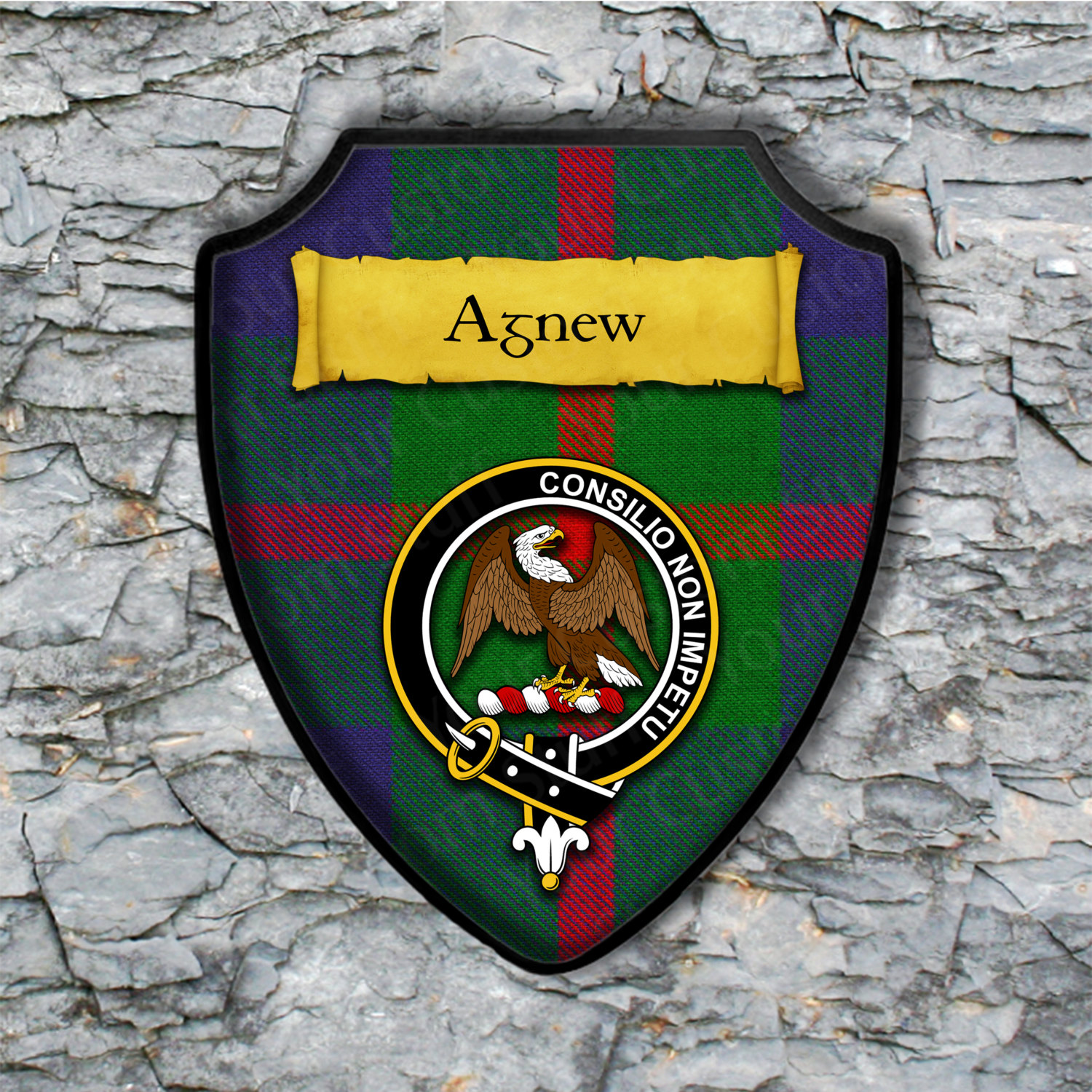 Agnew Shield Plaque with Scottish Clan Coat of Arms Badge on Clan Plaid Tartan Background Wall Art
