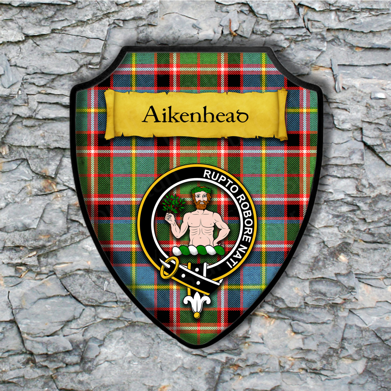 Aikenhead Shield Plaque with Scottish Clan Coat of Arms Badge on Clan Plaid Tartan Background Wall Art