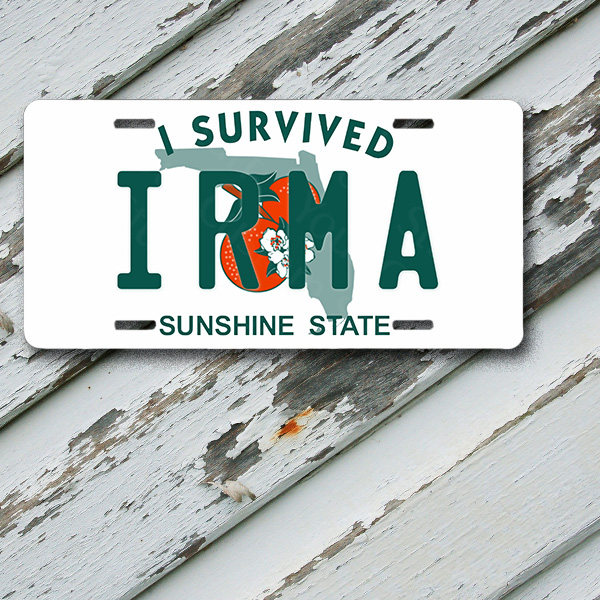 "License Plate Florida I Survived Hurricane Irma 6"" x 12""  Aluminum Vanity License Plate"