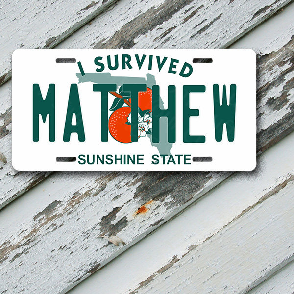 "License Plate Florida I Survived Hurricane Matthew 6"" x 12""  Aluminum Vanity License Plate"
